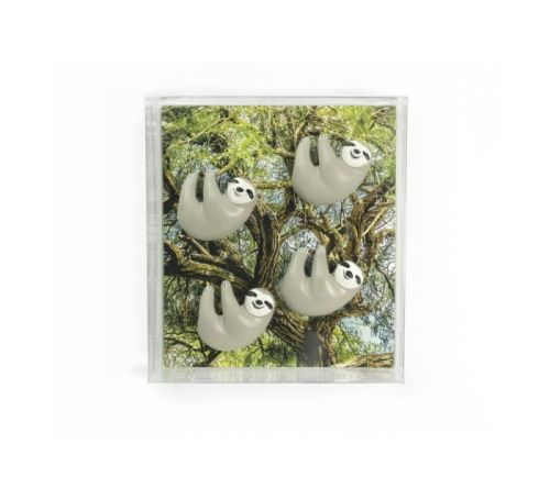 Magnet sloth set van 4