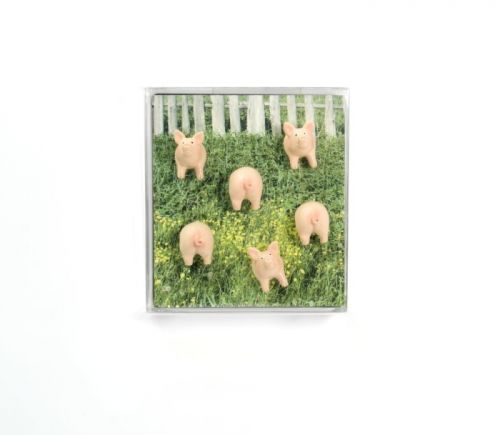 Magnet piggy set van 6