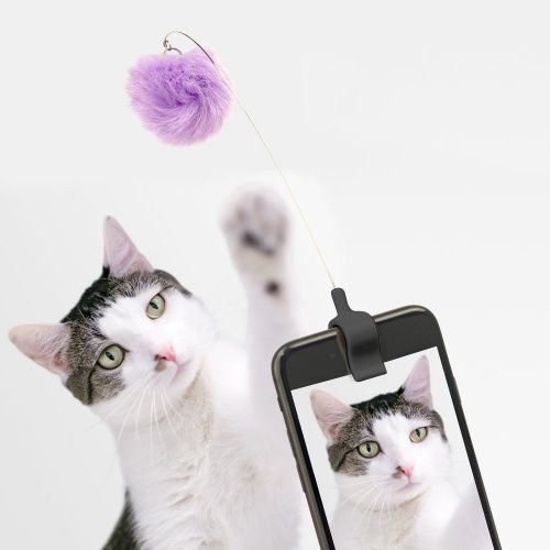 Kitty phone clip paars