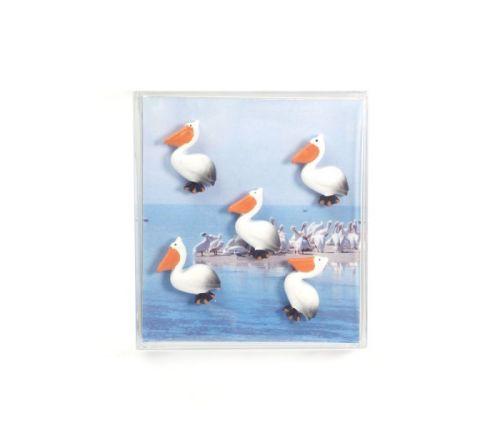 Magnet pelican set van 5
