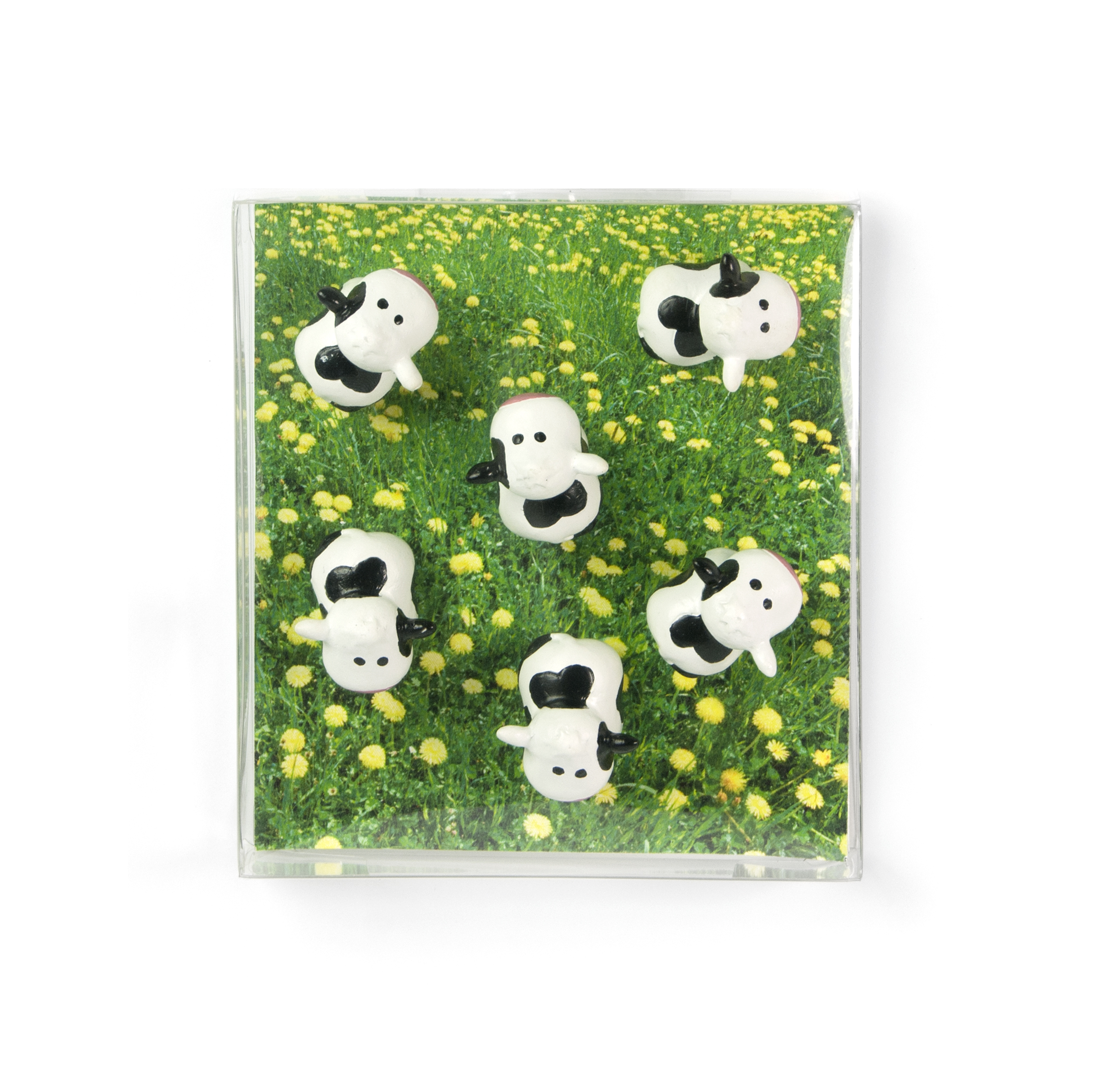 Magnet cow set of 6