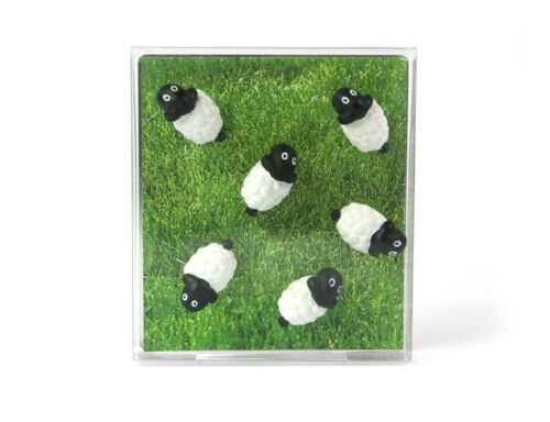Magnets sheep - set of 6 black/white