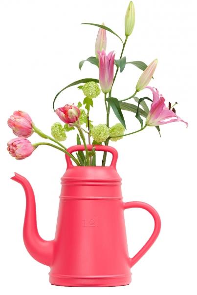 Gieter Xala Lungo pink