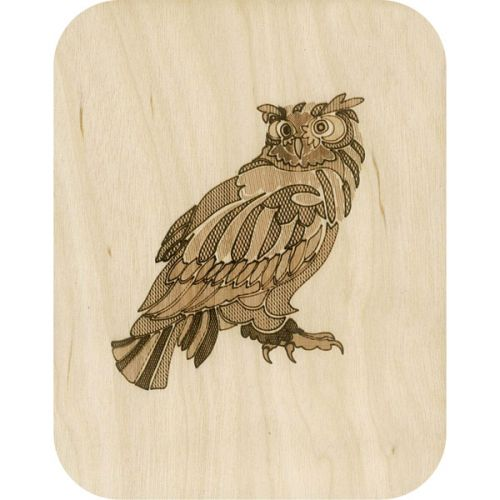 Wooden card big owl