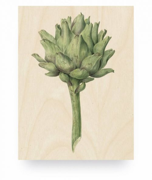 Wood print botanical artichoke small