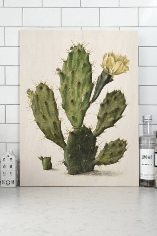 Wood print botanical cactus small