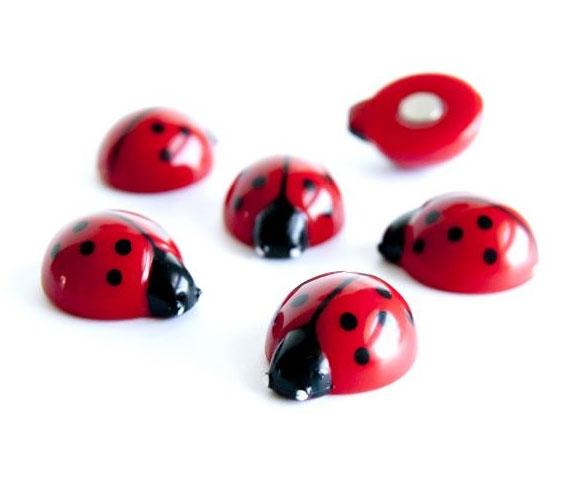Magneten lady bug