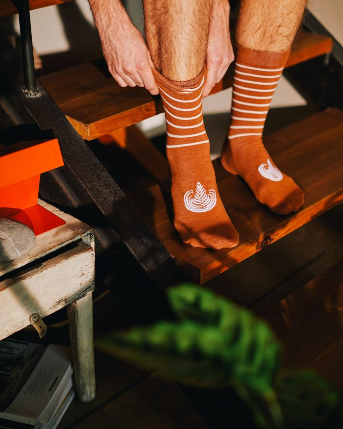 Latte socks caffé