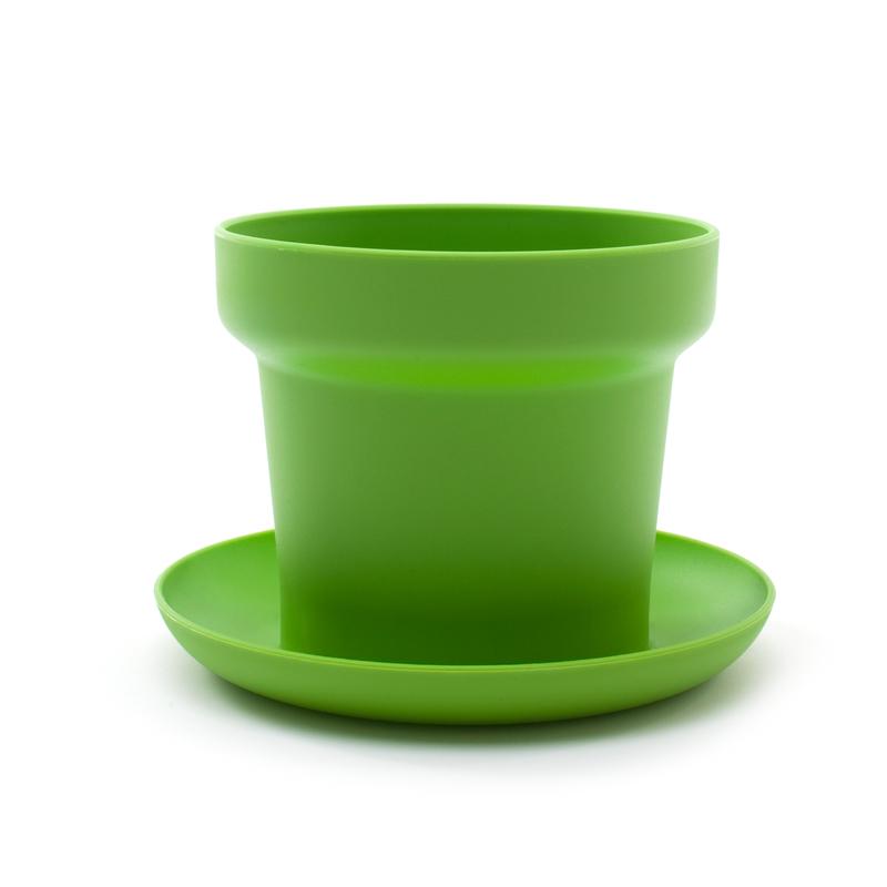 Green plant pot green