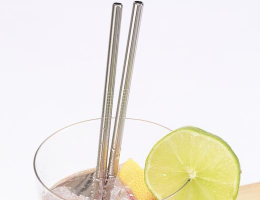 Stainless Steel Straws S/10