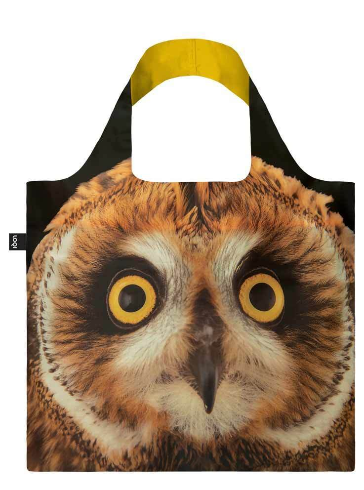 Loqi National Geographic - Short eared Owl