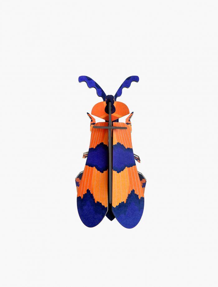 Winged Beetle
