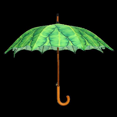 Paraplu bananenbladeren