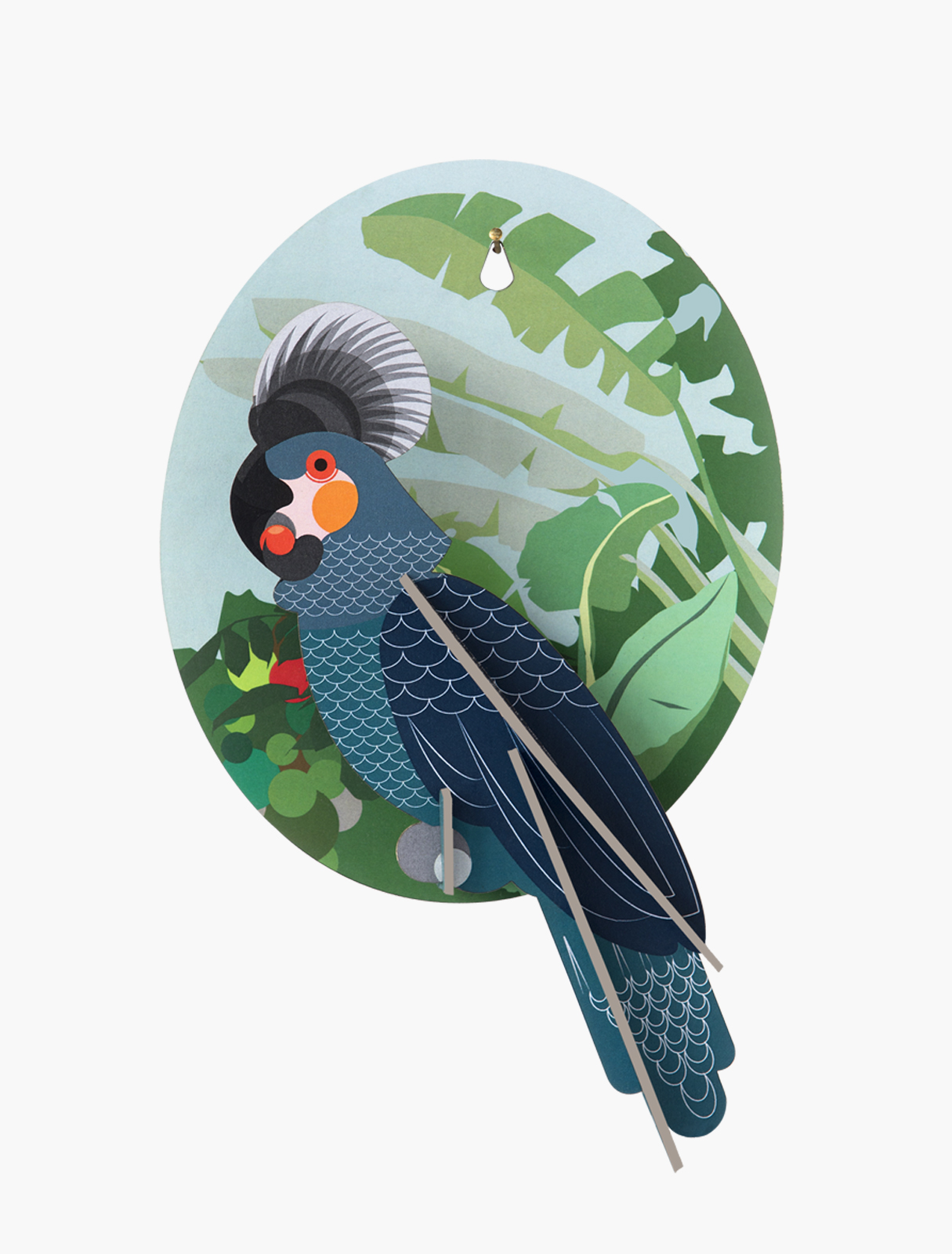 Wall decoration grey parrot